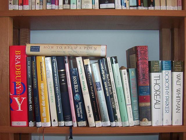 American Literature Image