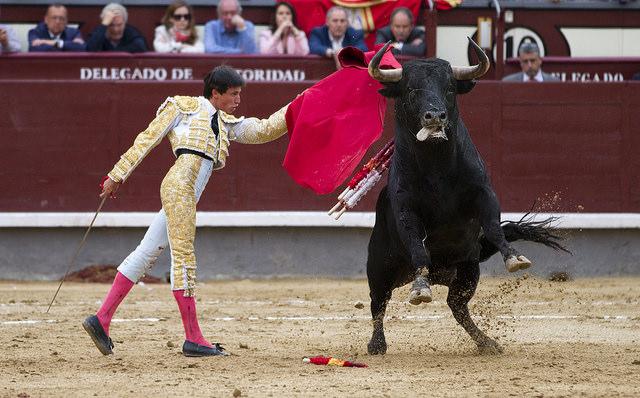 Spanish 2 Image